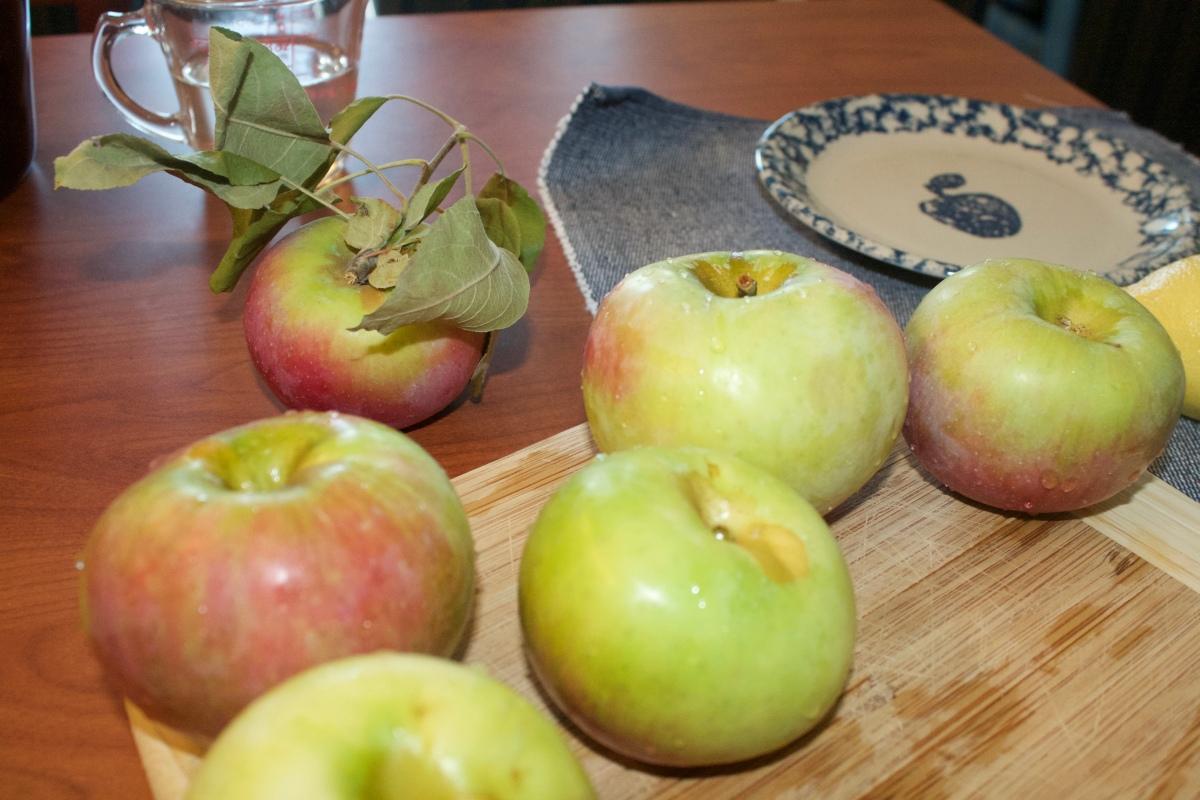 homemade-apple-pie-class-and-the-city-recipe